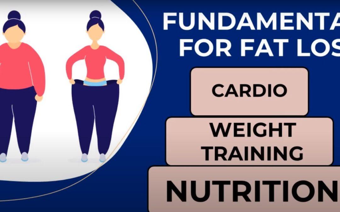 Fundamentals For Fat Loss