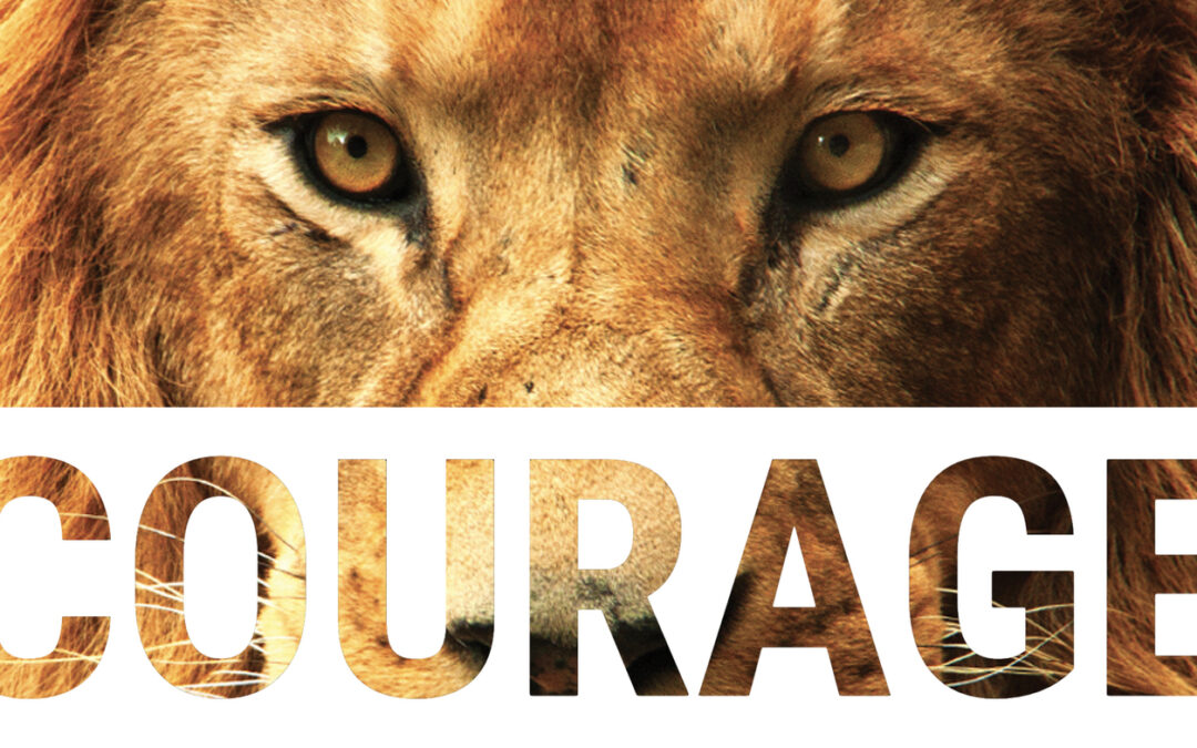 Courage to confidence